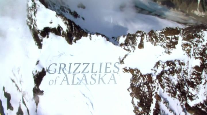 Image: Grizzlies-of-Alaska-Cover.jpg