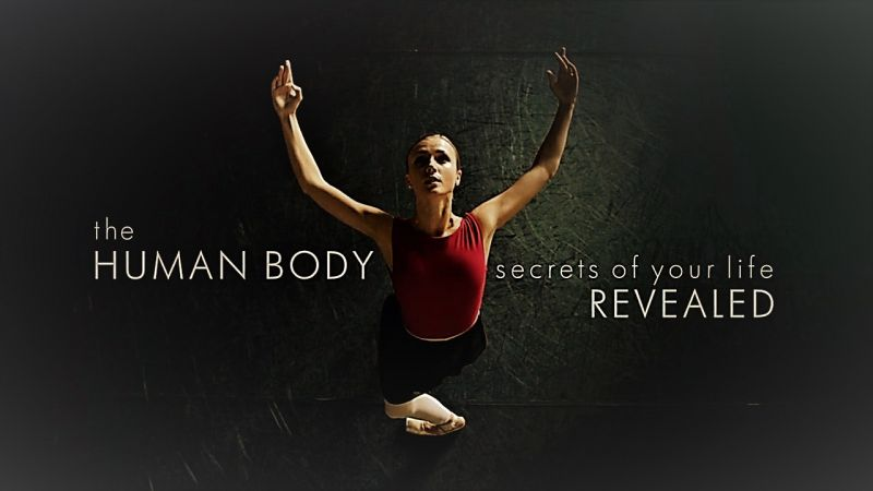 Image: The-Human-Body-Secrets-of-Your-Life-Revealed-Cover.jpg