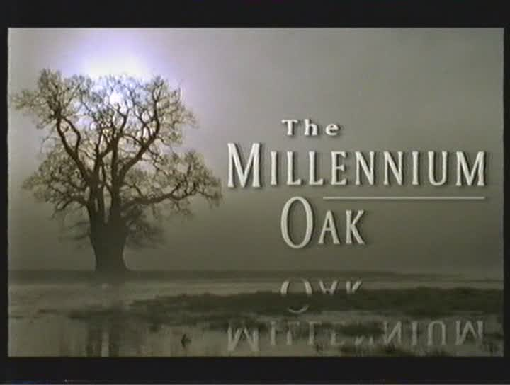Image: The-Millenium-Oak-Cover.jpg