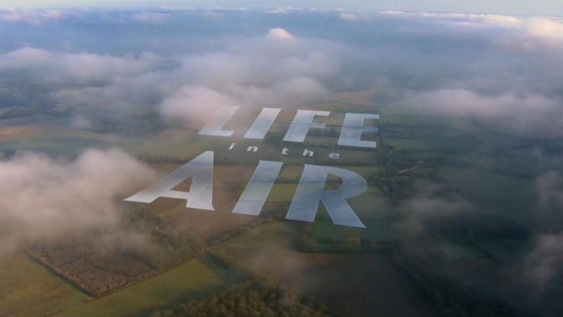 Image: Life-in-the-Air-Cover.jpg