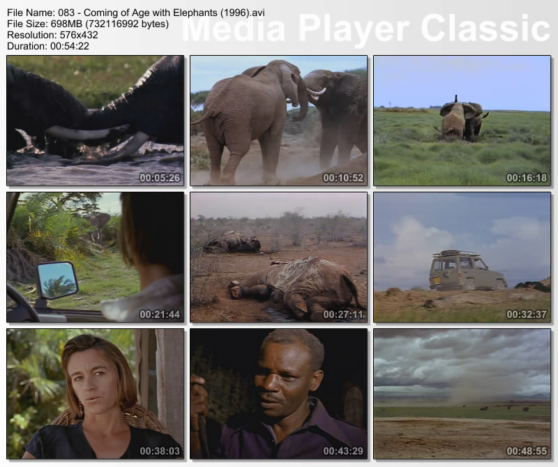 Image: Coming-of-Age-with-Elephants-Screen0.jpg