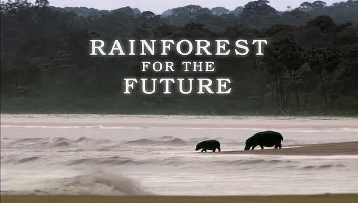 Image: Gabon-Forests-of-the-Future-Cover.jpg