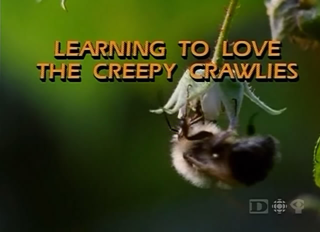 Image: Learning-to-Love-the-Creepy-Crawlies-Cover.jpg