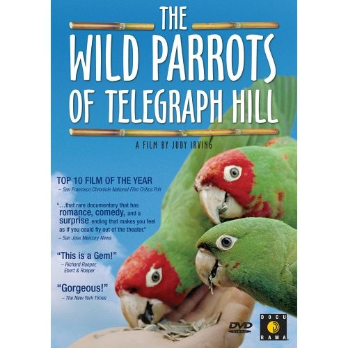 Image: The-Wild-Parrots-of-Telegraph-Hill-Cover.jpg