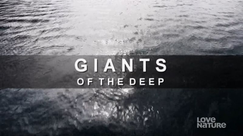 Image: Giants-of-the-Deep-Cover.jpg