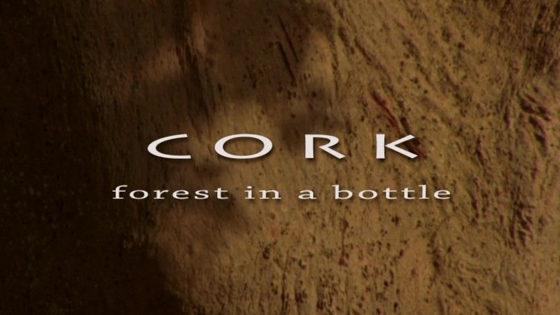 Image: Cork-On-the-Wild-Side-Cover.jpg
