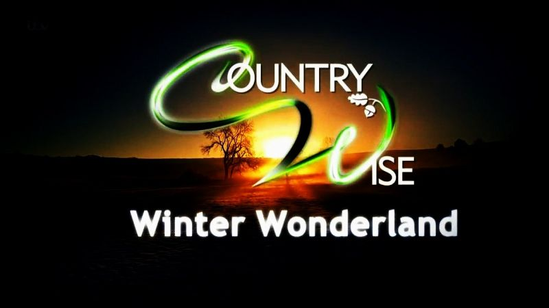Image: Countrywise-Winter-Wonderland-Cover.jpg