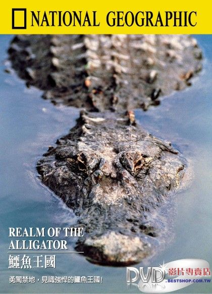Image:Realm-of-the-Alligator-Cover.jpg