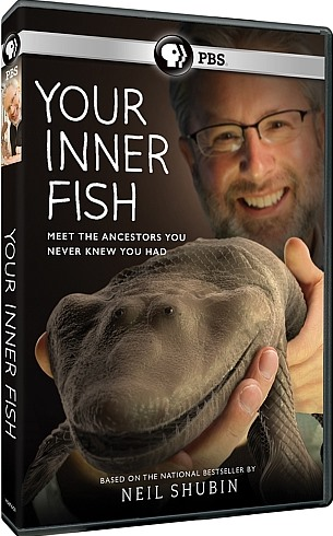 Image: Your-Inner-Fish-Cover.jpg