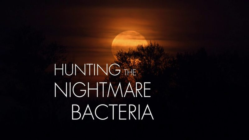 Image: Hunting-the-Nightmare-Bacteria-Cover.jpg