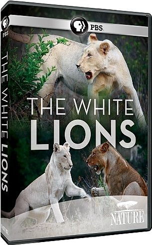 Image: The-White-Lions-Cover.jpg