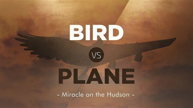 Image: Bird-vs.-Plane-Miracle-on-the-Hudson-Cover.jpg
