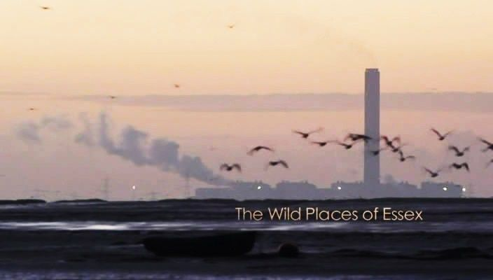 Image: The-Wild-Places-of-Essex-Cover.jpg