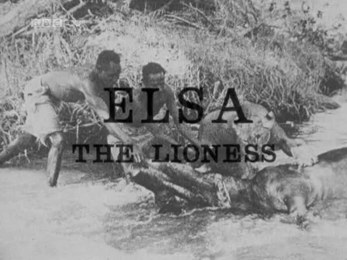 Image: Elsa-the-Lioness-Cover.jpg
