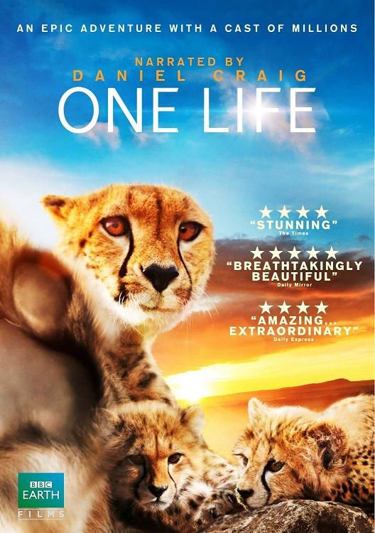 Image: One-Life-Cover.jpg