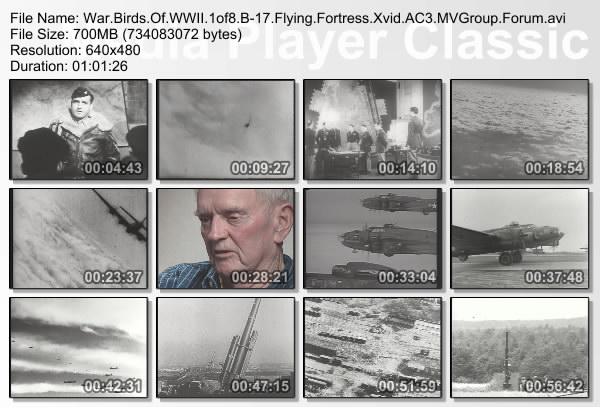 Image: Warbirds-of-World-War-II-Screen0.jpg