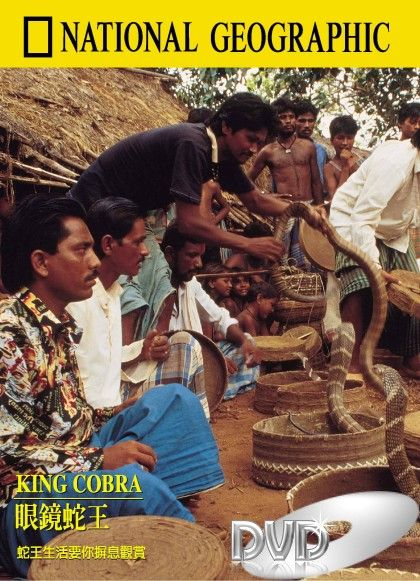 Image: King-Cobra-Cover.jpg