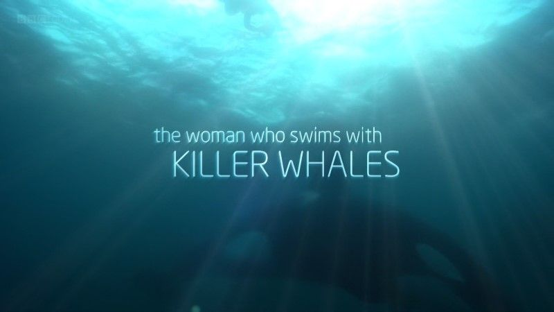Image: The-Woman-who-Swims-with-Killer-Whales-BBC-1080p-Cover.jpg