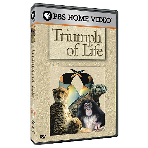Image:Triumph_of_Life_Cover.jpg