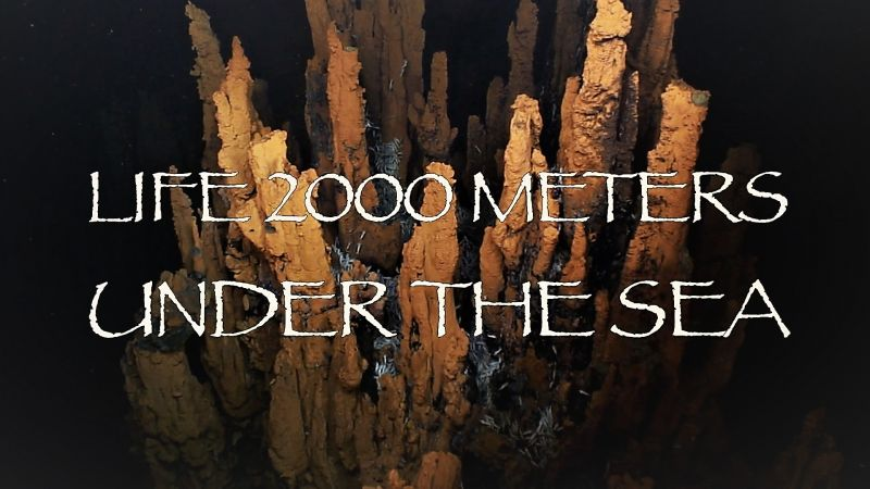 Image: Life-2-000-Meters-under-the-Sea-Cover.jpg