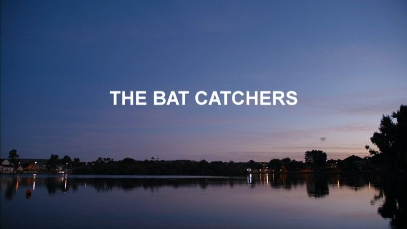 Image: The-Bat-Catchers-Cover.jpg