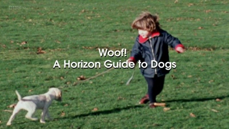 Image: Woof-A-Horizon-Guide-to-Dogs-BBC-Cover.jpg