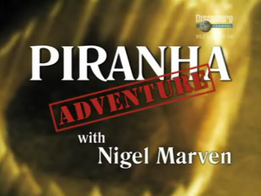 Image:Piranha Adventure Cover.jpg