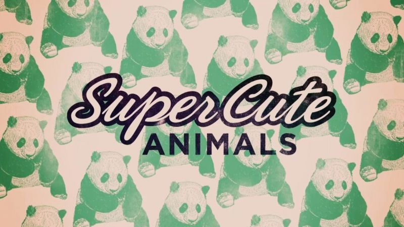 Image: Super-Cute-Animals-Cover.jpg