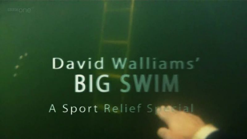 Image: David-Walliams-Big-Swim-Cover.jpg