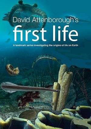 Image: First-Life-Cover.jpg