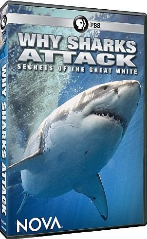 Image: Why-Sharks-Attack-Secrets-of-the-Great-White-Cover.jpg