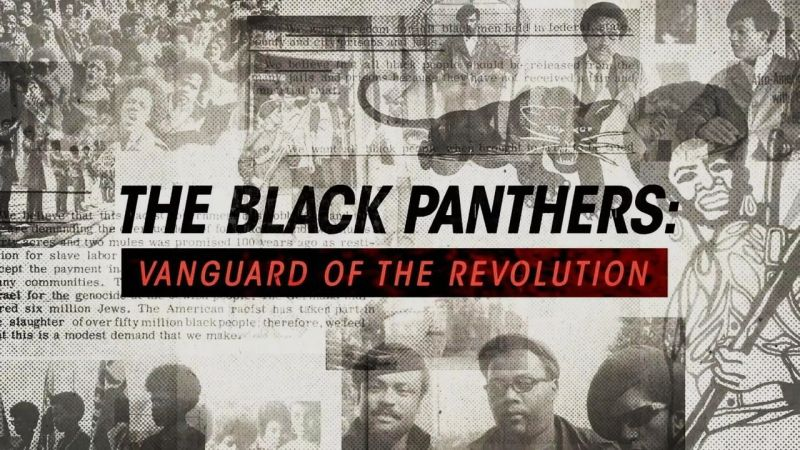 Image: The-Black-Panthers-Cover.jpg