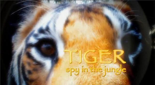 Image:Tiger-Spy-in-the-Jungle-Cover.jpg