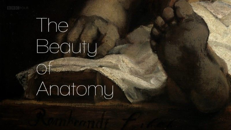 Image: The-Beauty-of-Anatomy-BBC-Cover.jpg