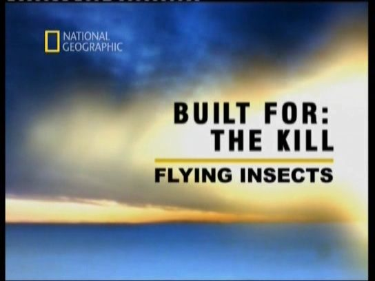 Image: Built-for-the-Kill-Flying-Insects-Cover.jpg