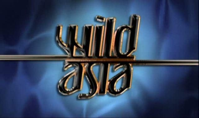 Image: Wild-Asia-Cover.jpg