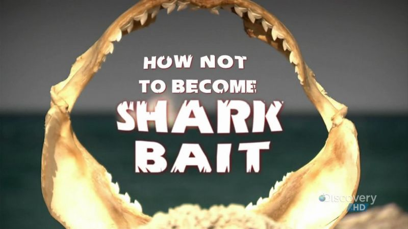 Image: How-Not-to-Become-Shark-Bait-Cover.jpg