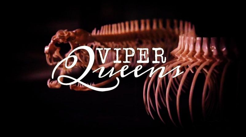 Image: Viper-Queens-Cover.jpg