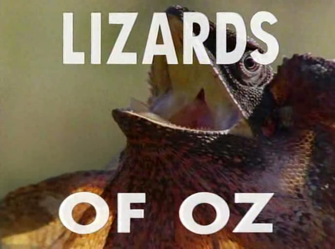 Image: Lizards-of-Oz-Cover.jpg