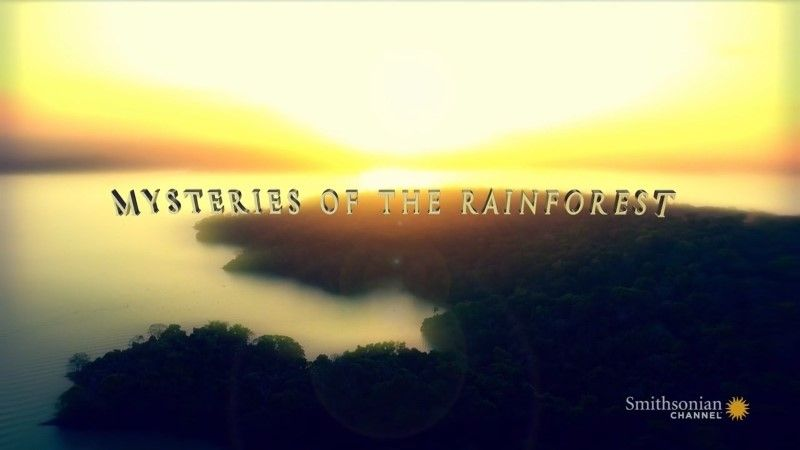 Image: Mysteries-of-the-Rainforest-Cover.jpg