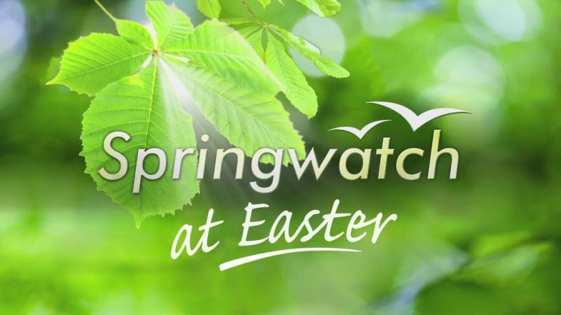 Image: Springwatch-at-Easter-2015-Cover.jpg