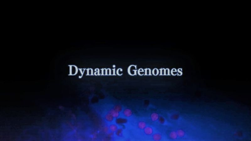Image: Dynamic-Genomes-Series-1-Cover.jpg