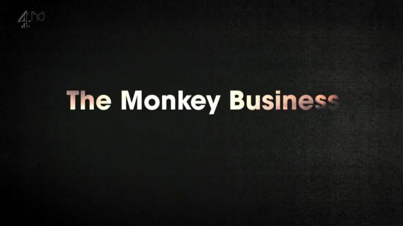Image: The-Monkey-Business-Cover.jpg