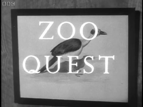 Image: Zoo-Quest-Cover.jpg