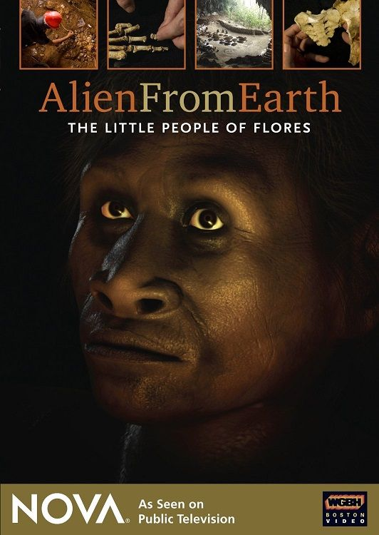 Image: Alien-from-Earth-The-Little-People-of-Flores-Cover.jpg