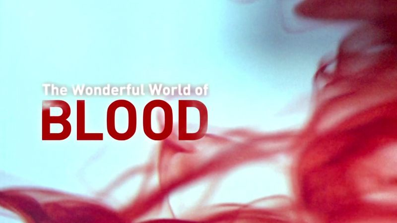 Image: The-Wonderful-World-of-Blood-Cover.jpg