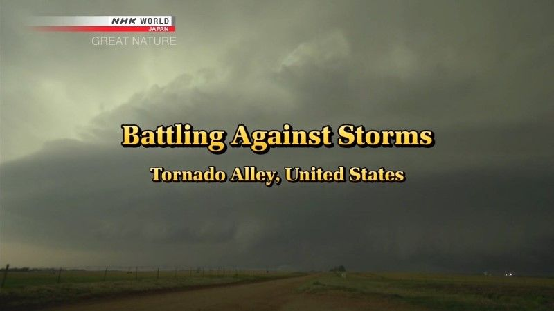 Image: Battling-Against-Storms-Tornado-Alley-Cover.jpg