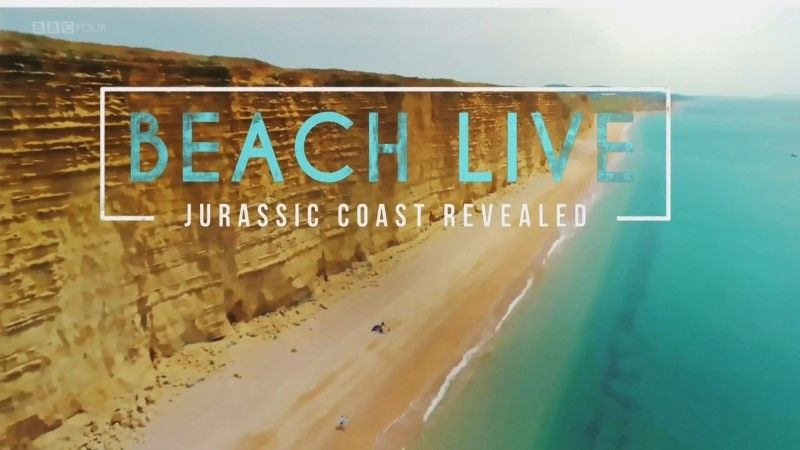 Image: Beach-Live-Jurassic-Coast-Revealed-Cover.jpg