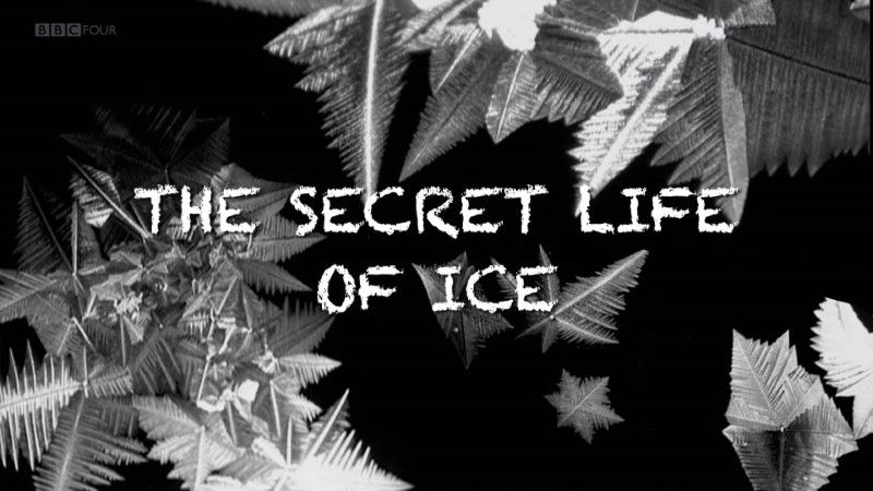 Image: The-Secret-Life-of-Ice-BBC-Cover.jpg