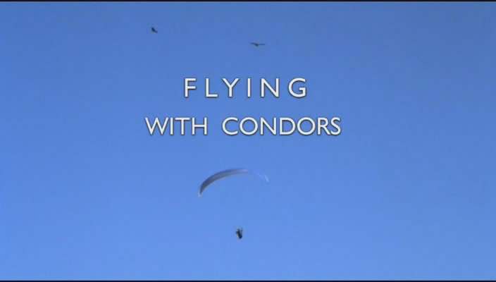 Image: Flying-with-Condors-Cover.jpg